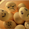 hih-pix_feeling-eggs